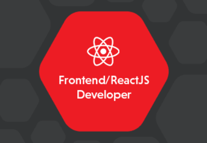 Frontend / ReactJS Developer